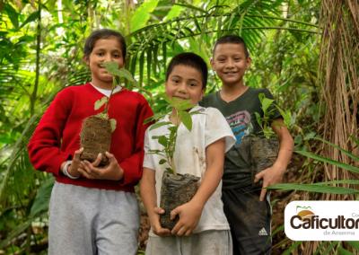 La reforestación de los bosques en manos de los niños